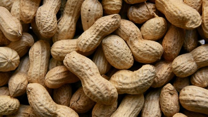 Ученые разработали первые целевые ингибиторы аллергенов арахиса